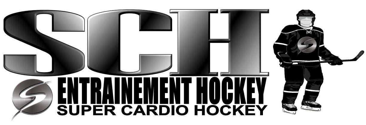 silver et noir logo SCH
